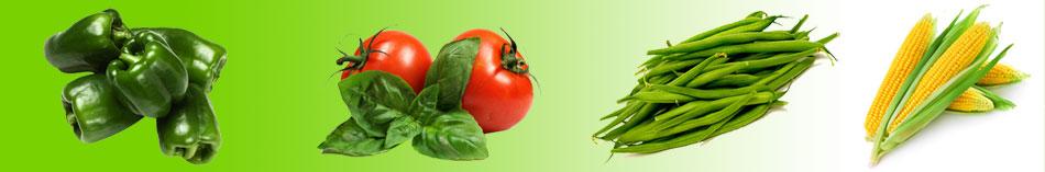 agro-food-new